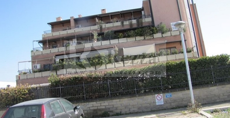 maggiolino (2)